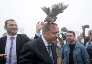 A grouse sits on Turkish President Tayyip Erdogan's head as he visits a facility of the Forest and Water Management Ministry in Rize, Turkey, August 14, 2015.