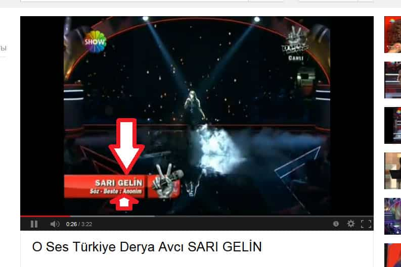 sari-aghjik-on-Show-Tv-Turkey
