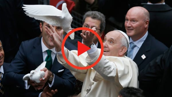 pope Releasing a Dove