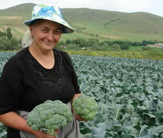 EU opens organic production educational centre in Armenia